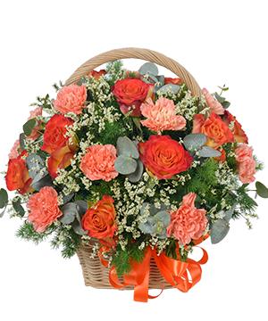Hoa sinh nhật người yêu Just For You hoa sinh nhật đẹp